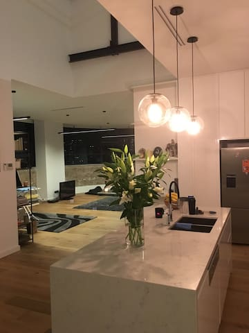Lux Warehouse New York Styled apartment - Woolloomooloo - Apartment