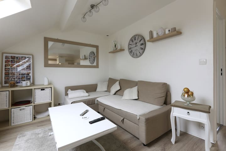 Appartement Cosy Paris/Disneyland - Noisy-le-Grand - Departamento