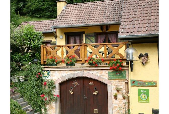 Chalet Alsace Rimbach / Masevaux - Rimbach près de Masevaux - Chalé