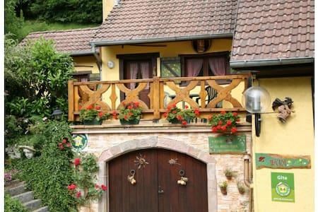 Chalet Alsace Rimbach / Masevaux - Rimbach près de Masevaux - スイス式シャレー