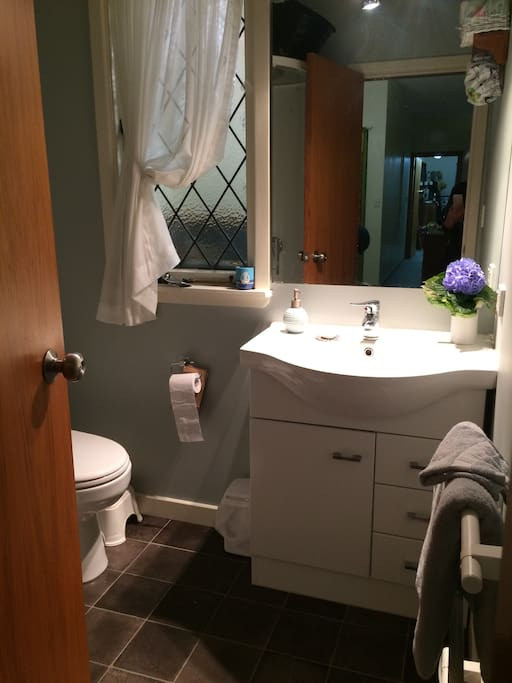 Bathroom with shower, vanity and toilet adjacent to bedroom.  Another toilet with handbasin is off the laundry.