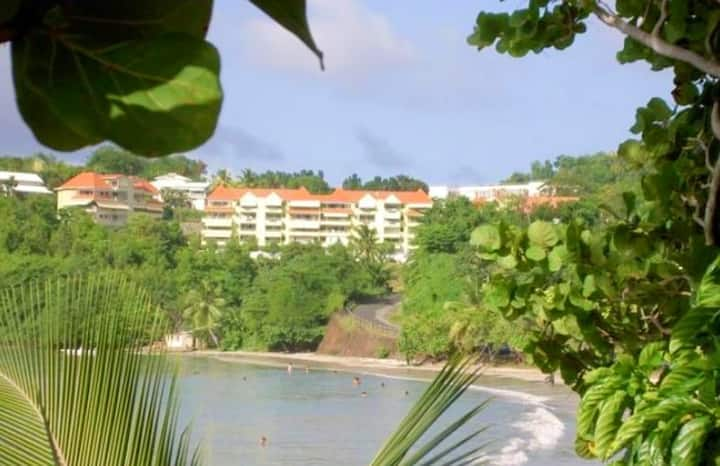 Apartment with 2 bedrooms in La Trinité, with wonderful sea view, furnished terrace and WiFi - 150 m from the beach