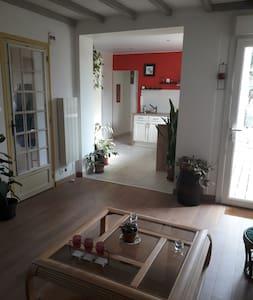 Charmant appartement de 50m2 au coeur de la Vienne