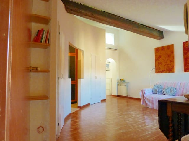 myticinese - Charming Attic Milano Downtown - 65mq