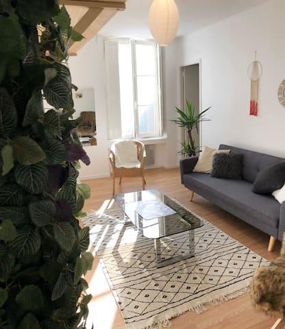 Appartement cosy cœur de Nantes