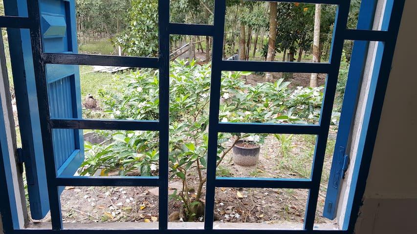 Bedroom 1  (Garden view)