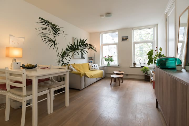 Fancy apartment in Oud-West area