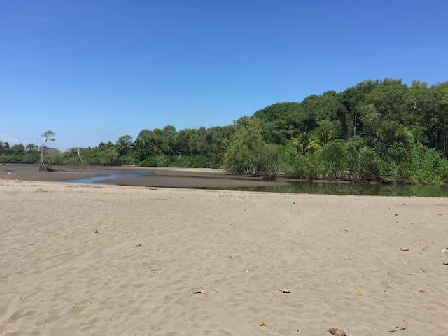 Banderas Beach..Fishing, Surfing, Horseback riding, Beach Walking etc...