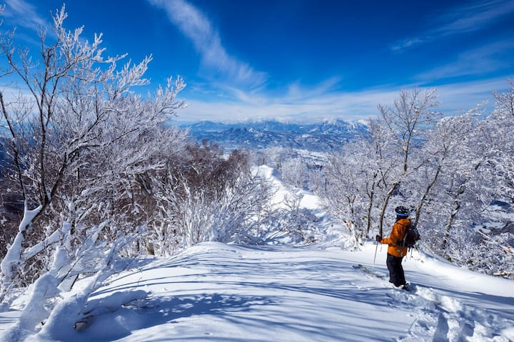 Kaiya Nozawa Lodge - 50 m to the slopes
