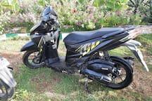 Honda click 150cc 350p a day