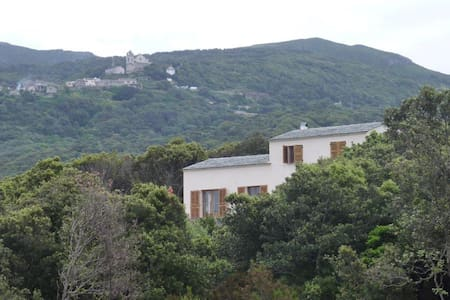Grande maison Centuri Corse - Centuri