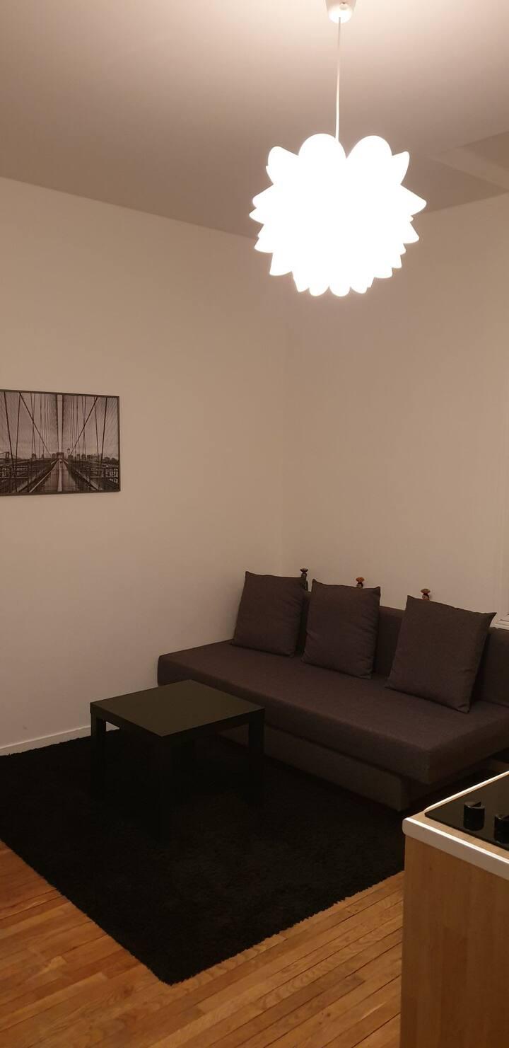 Studio meublé 16m2 hyper centre de Reims