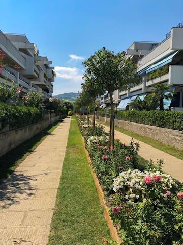 Seafront apartment in Villa Rosa, TE