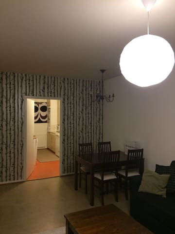 Two-room apartment(50m2), next to city center