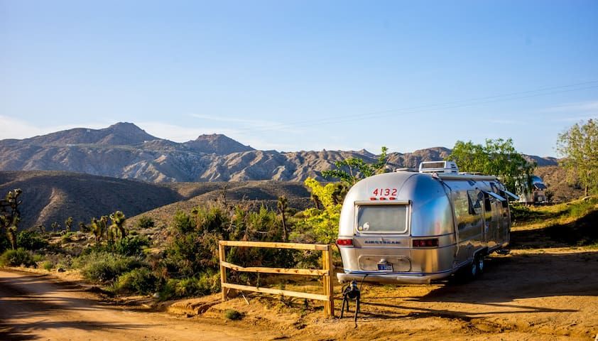 1975 Airstream International Surrounded by Nature