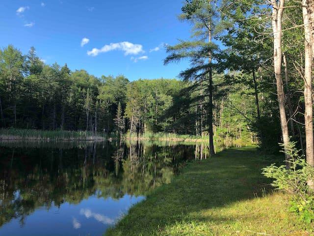 Adirondack Retreat. Unwind and Treat Your Mind.
