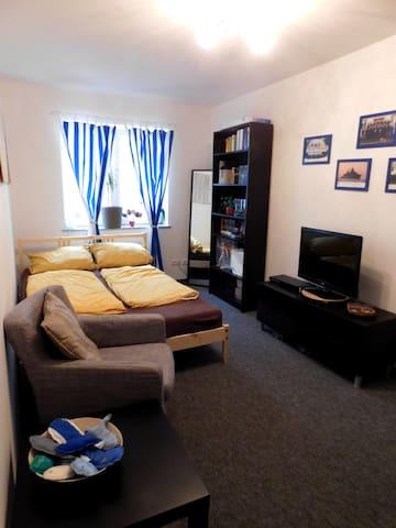 Helles Zimmer im Leipziger Zentrum - Leipzig - Wohnung