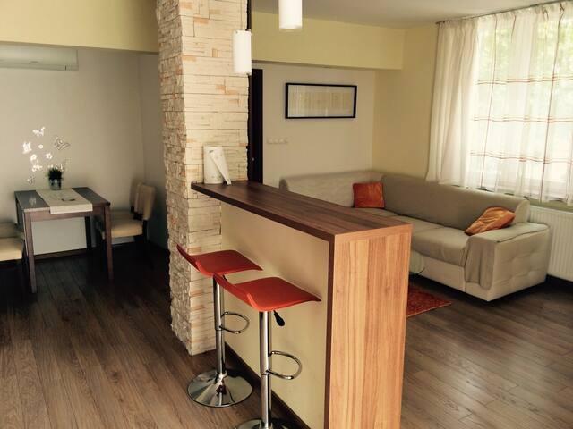 Cozy 2 bedroom apt near Central st. - Bratislava - Huoneisto
