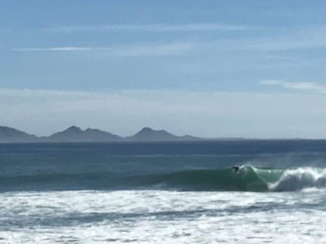 Surf lodges