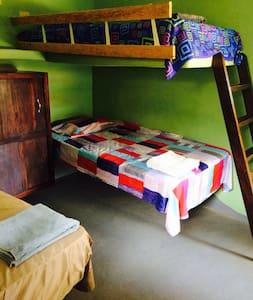 Mush Room - Las Salinas