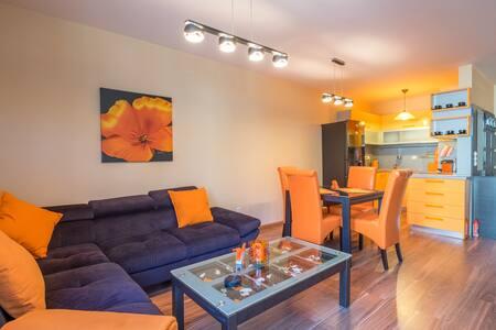 Designers Orange Apartment
