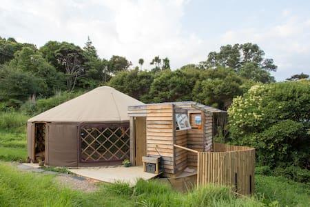 Experience Yurt-life in Raglan - Yurt