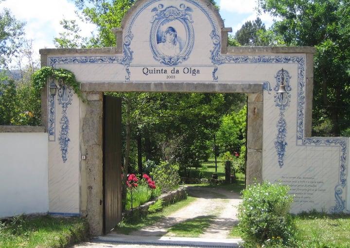 Quinta da Olga (Alojamento Local)