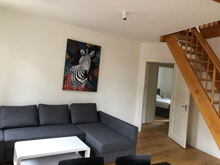 Beautiful Central Apartment, 4 rooms