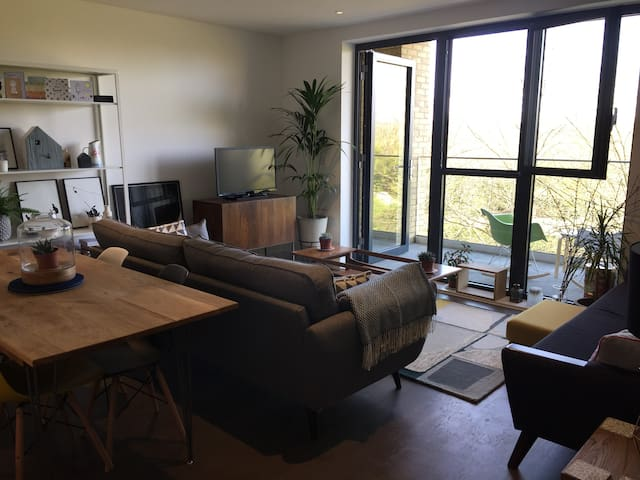 Contemporary 2 bed Apartment Shoreditch Hackney - London - Apartment
