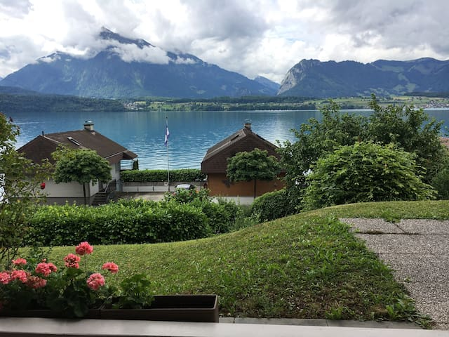 Lake View, Oberhofen am Thunersee