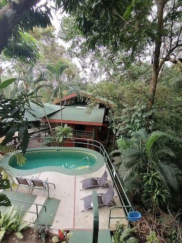 Lovely room w/shared kitchen  pool into the jungle