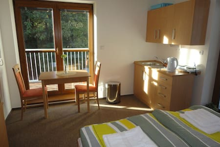 Dvoulůžkový apartmán s balkónem