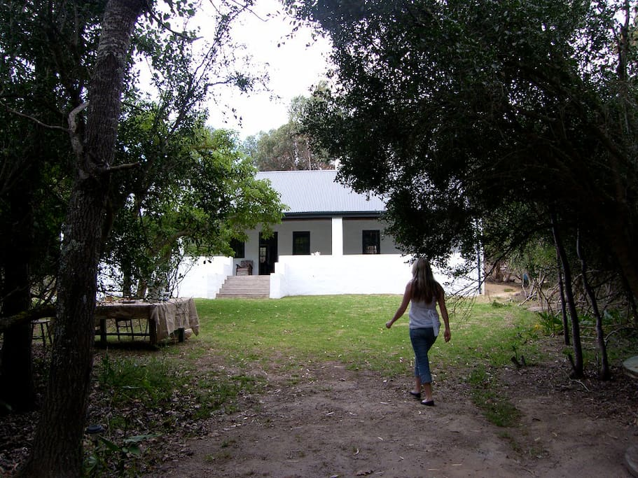 The cottage is set in a private glade near the little forest