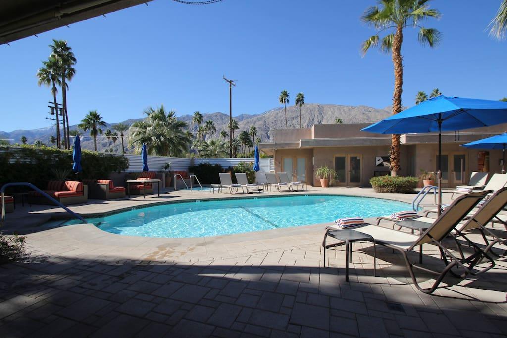 Lovers Paradise En Suite Jacuzzi Poolside King Villas For Rent In Palm Springs California