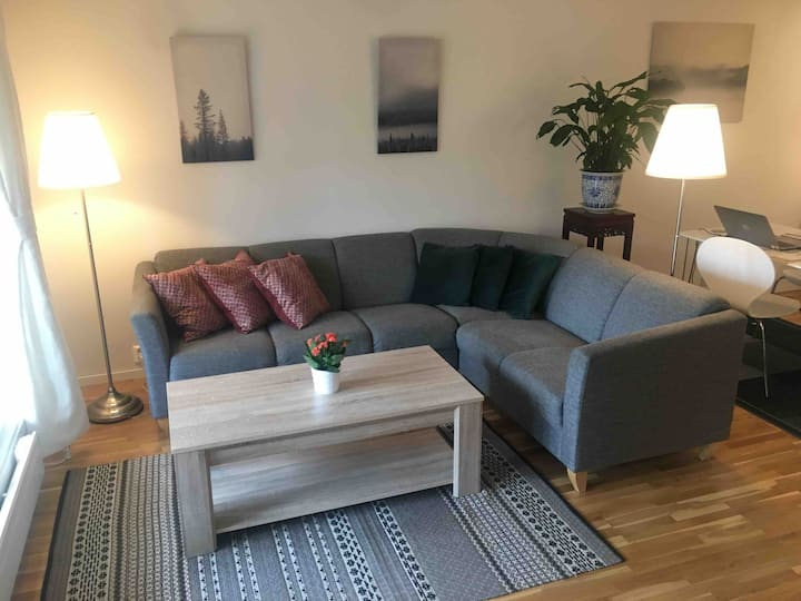 Bright and Spacious  Central Oslo - 3 Bedrooms!