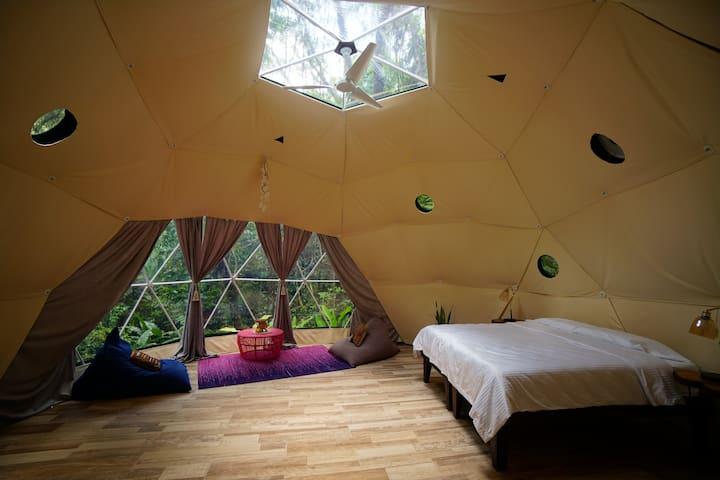Geodesic River Dome: Morpho