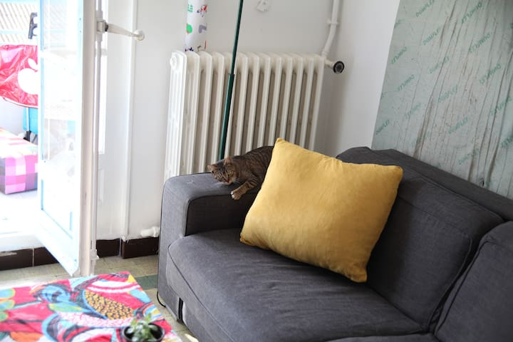 Chambre dans colocation, avec terrasse au soleil