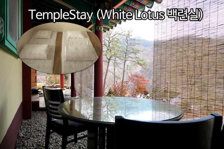 TempleStay (White Lotus)