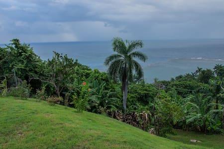 Sandy's Ocean View  Villa- 20 mins to Ocho Rios - Oracabessa - Villa