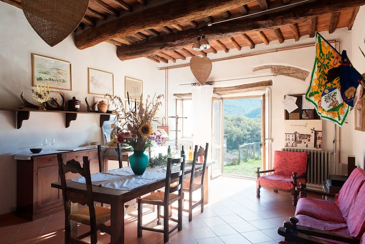 Near Florence farmholiday Tegline and private lake - Radda In Chianti - Appartement