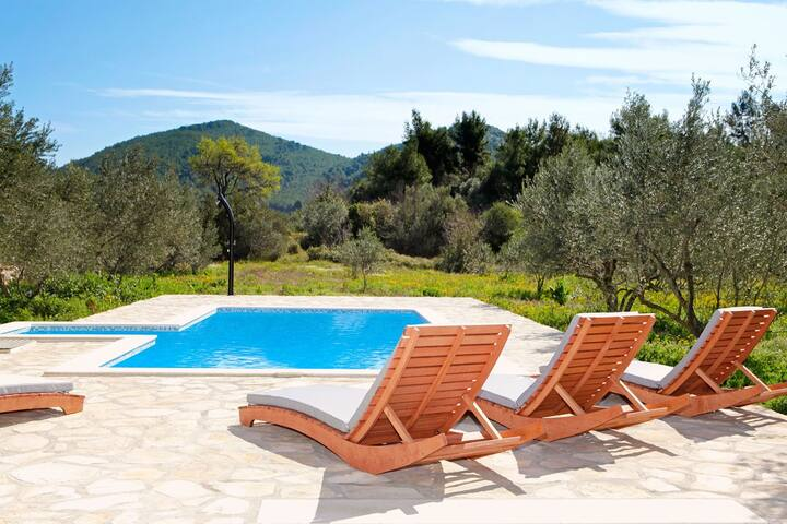 ctko216/ Charming holiday house with private pool in Korčula -Blato, up to 6 persons, 3 bedrooms, wi-fi, AC, pets alowed