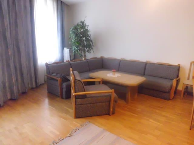 Donaublick Objekt 3