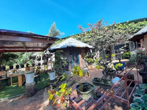 Let's visit our bonsai garden and stay my homestay