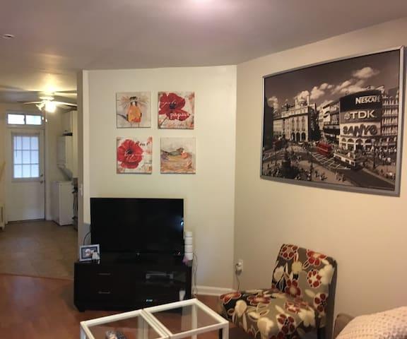 Economical Affordable Basement Bachelors Pad - Washington - Apartamento