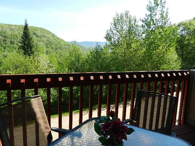 Tremblant, view, quite, good price! - Mont-Tremblant - Wohnung
