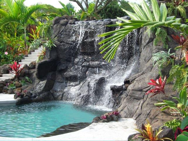 Tropical Pool Home ; Garden Hale 2B