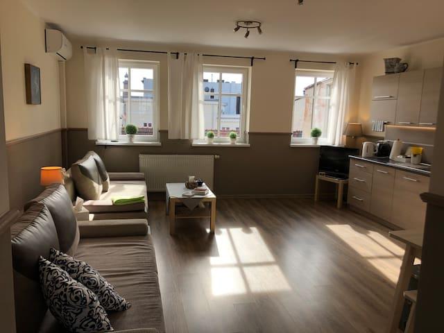 Apartament ŻAK w Śródmieściu no. 9!
