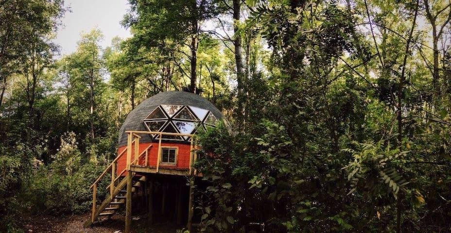 Domo Bosque Vivo Termas De Chillán