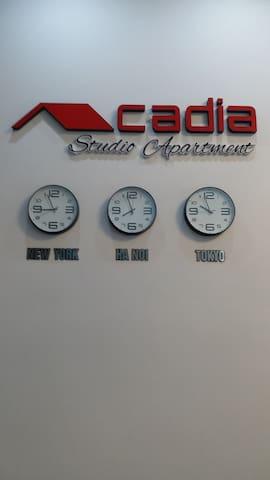 Acadia Central Studio