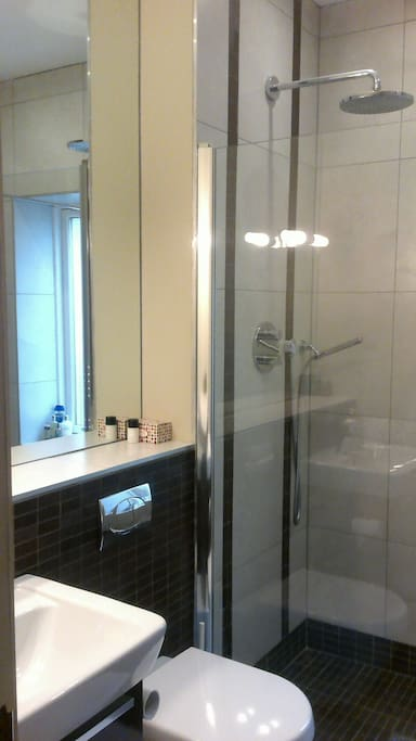 Ensuite shower and bathroom